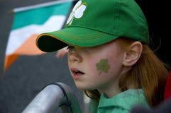 Rojo irlandés foto de archivo libre de regalías