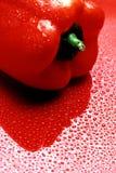 Rojo mojado Foto de archivo