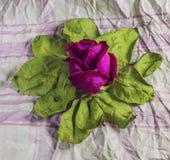 Rojo seque color de rosa en las hojas viejas imagen de archivo libre de regalías