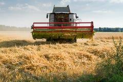 Rojo verde que trabaja cosechando la cosechadora en un campo del trigo en fron Fotografía de archivo