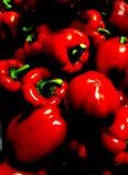Rojo foto de archivo libre de regalías
