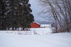 Rojo vertido en un paisaje blanco Foto de archivo