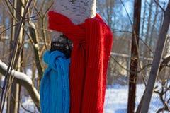 Rojo y azul Fotografía de archivo
