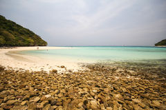 Rok island, Koh Rok, Trang province Thailand Royalty Free Stock Photo