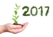 2017 rok Nowonarodzonych Obraz Stock