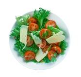Roka Salata Royalty Free Stock Images