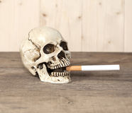 Rokende menselijke schedel en sigaret Stock Foto's
