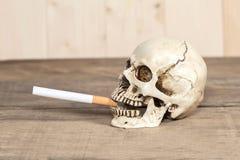 Rokende menselijke schedel met sigaret Stock Foto
