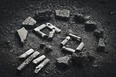 Rokende schedel Stock Foto's