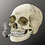 Rokende Schedel Royalty-vrije Stock Foto