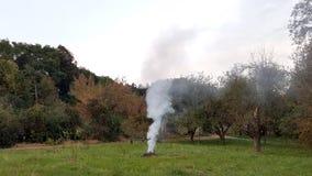 Rokerig kampvuur verlaten zonder supervisie tussen bomen stock fotografie