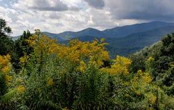 Rokerige bergen Asheville stock foto's