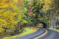 Rokerige Bergtunnel met Kleurrijk Autumn Foliage royalty-vrije stock afbeelding