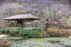 Rokko alpine botanical garden in autumn royalty free stock images