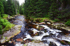 Roklansky creek in Sumava, Czech Republic Royalty Free Stock Photo