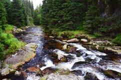 Roklansky liten vik i Sumava, Tjeckien royaltyfri foto