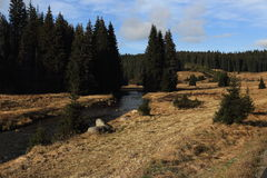 Roklansky torrent, autumn scenery in the vicinity of Modrava, Czech republic Stock Photography