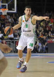 Roko Ukic of Panathinaikos Royalty Free Stock Photo