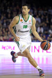 Roko Ukic of Panathinaikos Royalty Free Stock Image