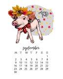 Roku kalendarz z świnią Miesięczna ilustracja Ręka rysujący prosiaczek z liść koroną Klon, dąb, kasztan, acorn septyczny royalty ilustracja
