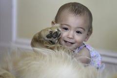 1 roku pies i dziewczyna Obraz Royalty Free