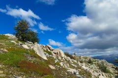Roky zielonego wzgórza góry krajobraz na pogodnym letnim dniu Obrazy Royalty Free