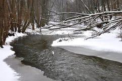 Rokytna河在冬天,捷克,欧洲 库存照片