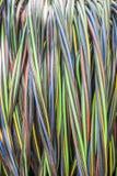 Rol van elektrische kabel Stock Foto