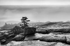 Rolamento da névoa dentro na montanha de cadillac preto e branco Fotografia de Stock