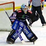 Roland Fink bramkarz Renon Ritten sport podczas gry przy Agorà areną na Styczniu 01, 2014, w Mediolan Fotografia Stock
