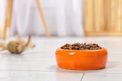 Role com alimento para o gato ou o cão no assoalho fotos de stock