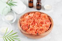 Role com fresco molham a garrafa de óleo cor-de-rosa e essencial para termas, bem-estar e aromaterapia imagens de stock