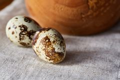 Role com ovos codorniz, ovos em um guardanapo homespun na tabela de madeira, close-up, foco seletivo Fotos de Stock Royalty Free