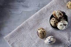 Role com ovos codorniz, ovos em um guardanapo homespun no fundo cinzento, close-up, foco seletivo Foto de Stock