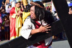 Role of Jesus Christ crying in pain and agony Carrying heavy wooden cross on street Royalty Free Stock Image