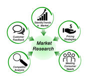 Role of Market Research Royalty Free Stock Image