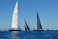 Rolex Cup 2011 - Porto Cervo Royalty Free Stock Images