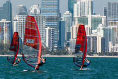 Rolex Miami OCR - Windsurfers in Miami Stock Photography