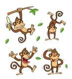 Rolig apabananuppsättning Stock Illustrationer