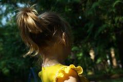 Rolig barnponnysvans i solljus tillbaka sikt arkivbild