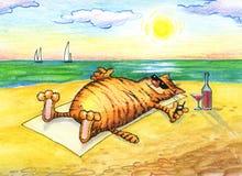 Rolig bild av katten med coctailen på stranden Arkivbild