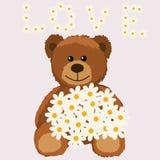 rolig björnbukett Royaltyfria Bilder