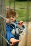 rolig dalta zoo för djur Royaltyfri Bild