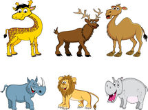 rolig djur samling Arkivfoto