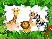 rolig djur samling Arkivfoton