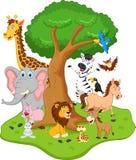 rolig djur tecknad film Arkivfoto