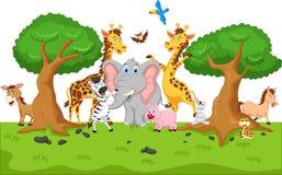 rolig djur tecknad film Royaltyfri Fotografi