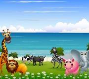 Rolig djur tecknad filmsamling med strandbakgrund Arkivbild
