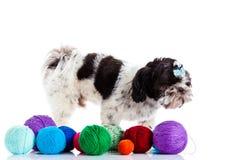 Rolig dod med threadballs på vit bakgrund arkivfoton