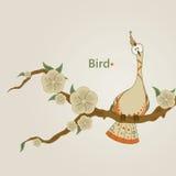 rolig fågel Royaltyfri Fotografi